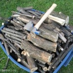 Recycling Wood Waste: Fuel for our Little Cod